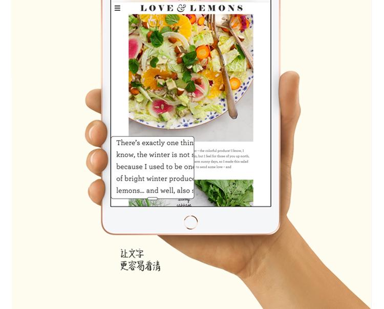詳情頁-iPad-mini5-750px_08.jpg