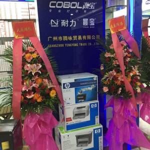广州腾咏电子科技有限公司