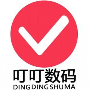 深圳市叮叮数码科技有限公司