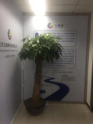 青島世紀恒心健康管理有限公司