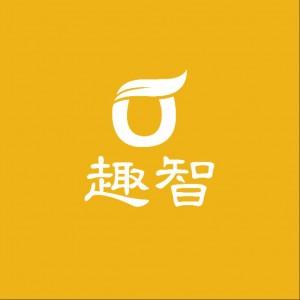 深圳趣智科技有限公司