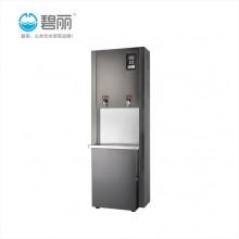 安阳市+碧丽+双聚能步进式开水器+节能饮水平台