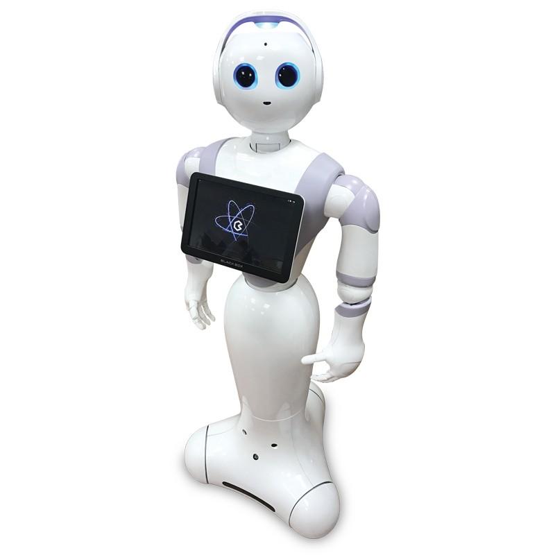 广州黑豆商用服务机器人租赁出租