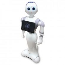 廣州黑豆商用服務機器人租賃出租