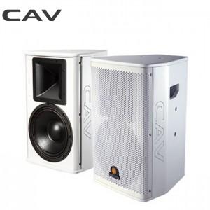 CAV 专业娱乐系统