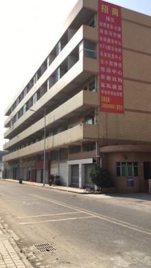 东莞市高埗镇振兴东一横路20号铺位整栋招租