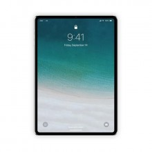 Apple iPad  Pro 三代 12.9寸(99新)