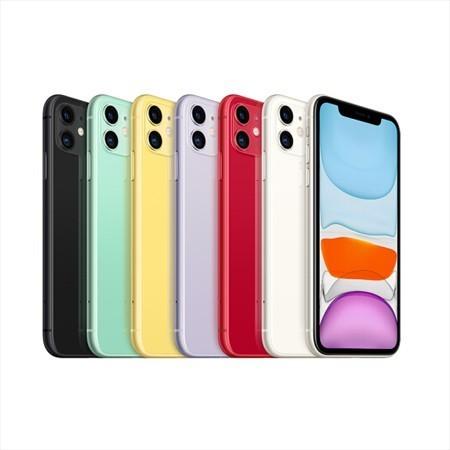 iPhone11 国行双卡全网(需归还)