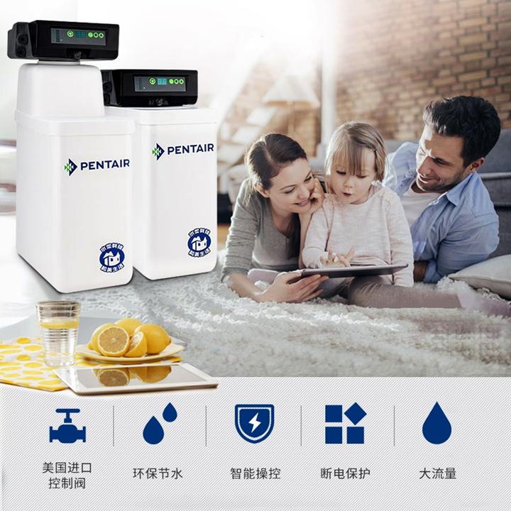 爱惠浦(EVERPURE)商用软水处理器 PT13(0.6吨/小时)