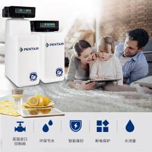 愛惠浦(EVERPURE)商用軟水處理器 PT18(0.8噸/小時)