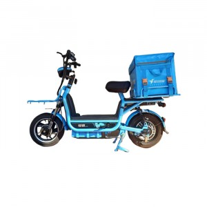 【需自取】輕騎電動車