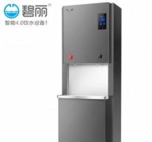重庆直饮水机办公工厂医院净水器-碧丽KL35A3-RO