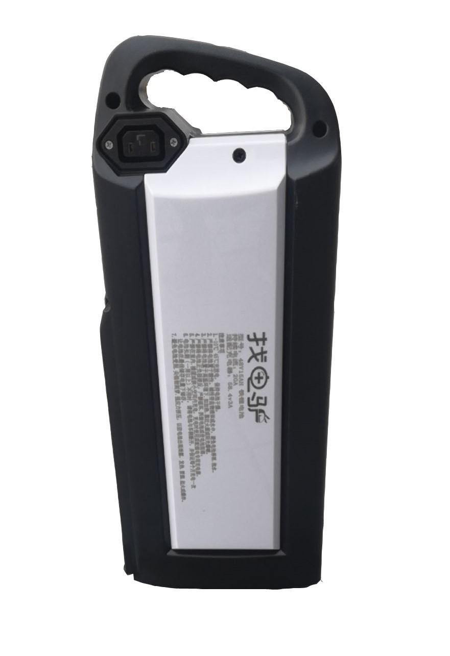 精品定制48V15A雙鋰電